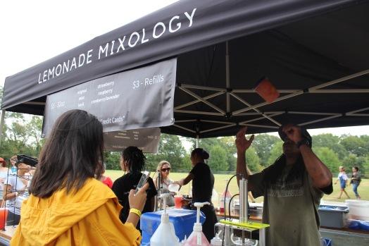 Lemonade Mixology