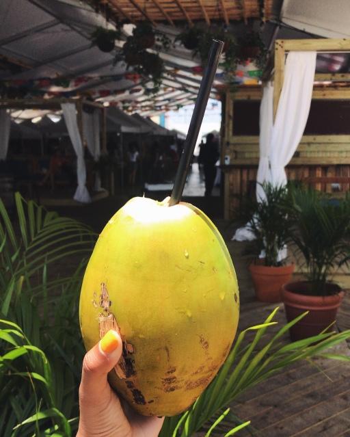 Small Coconut